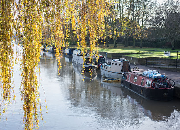 Boats moored on river in Stanstead Abbotts