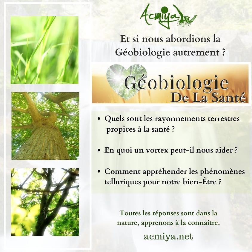 Géobiologie de la Santé