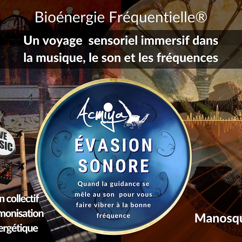 CONCERT VIBRATOIRE : Évasion au cœur de la musique de guérison Acmiya à Manosque