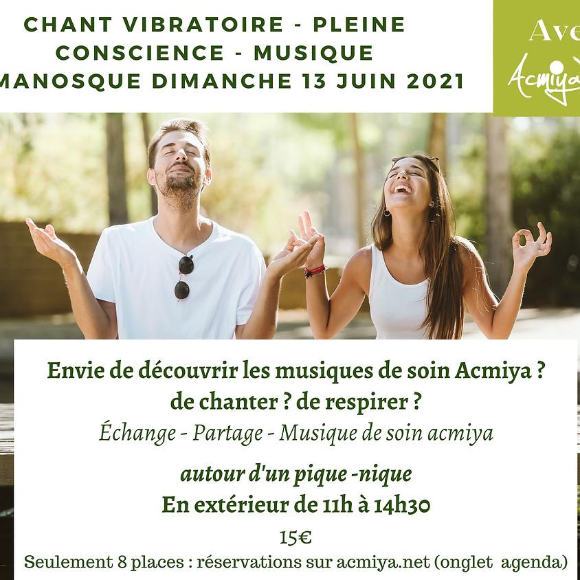 Pique-Nique- Rencontre - Musique - Chant vibratoire - Pleine conscience à Manosque