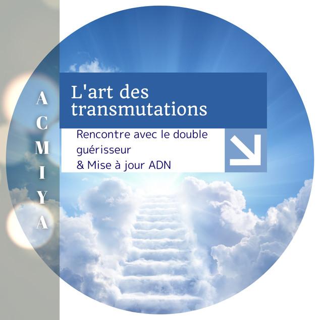 Module 8 Acmiya transmutations