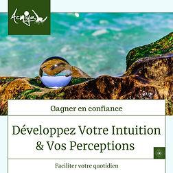 stage intuition bioénergie acmiya