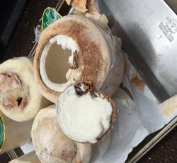 coconuts-1.jpg
