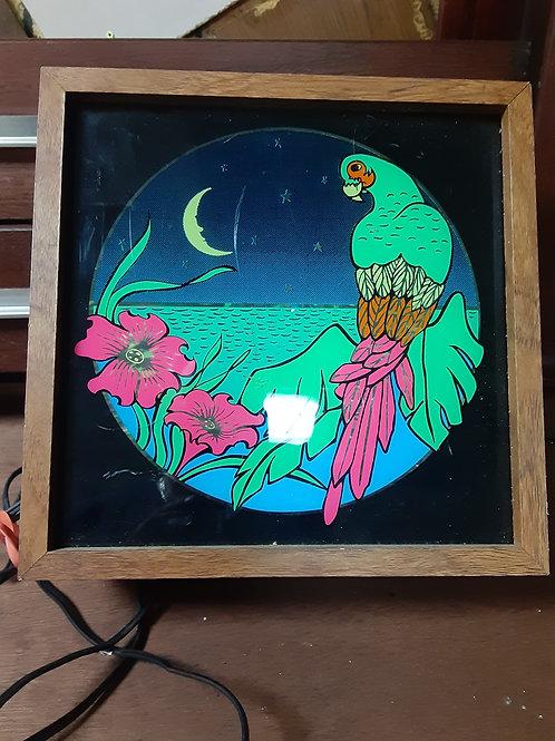 Parrot light box