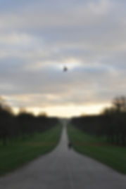 windsor09.jpg