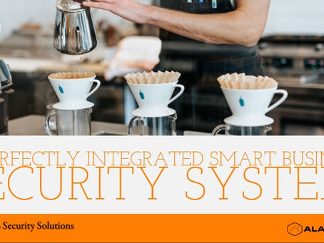 A Perfectly Integrated Smart Small Business Security System
