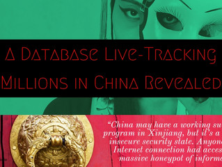Exposed Database for Live-Tracking Surveillance of Millions in China