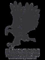 logo black eagle.png