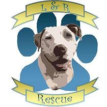 L&R Rescue