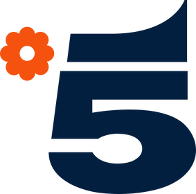 Canale_5.svg.png