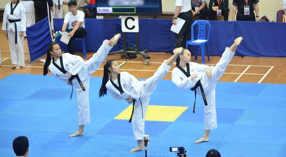Taekwondo Sparring Competition
