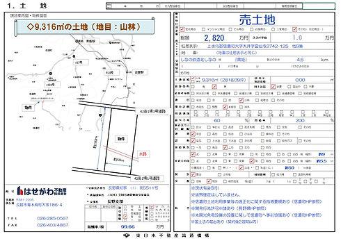 売買物件図面(信濃町霊仙寺山林9316㎡).jpg