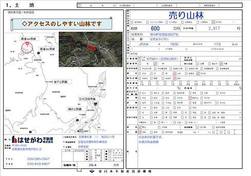 物件図面信州新町信級山林.jpg