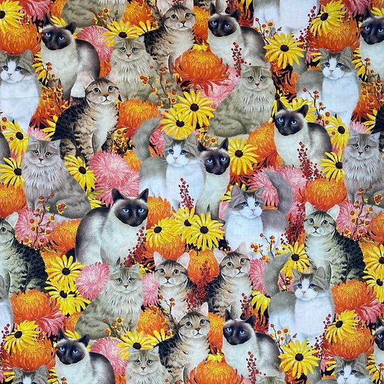 Flower Cat Fun