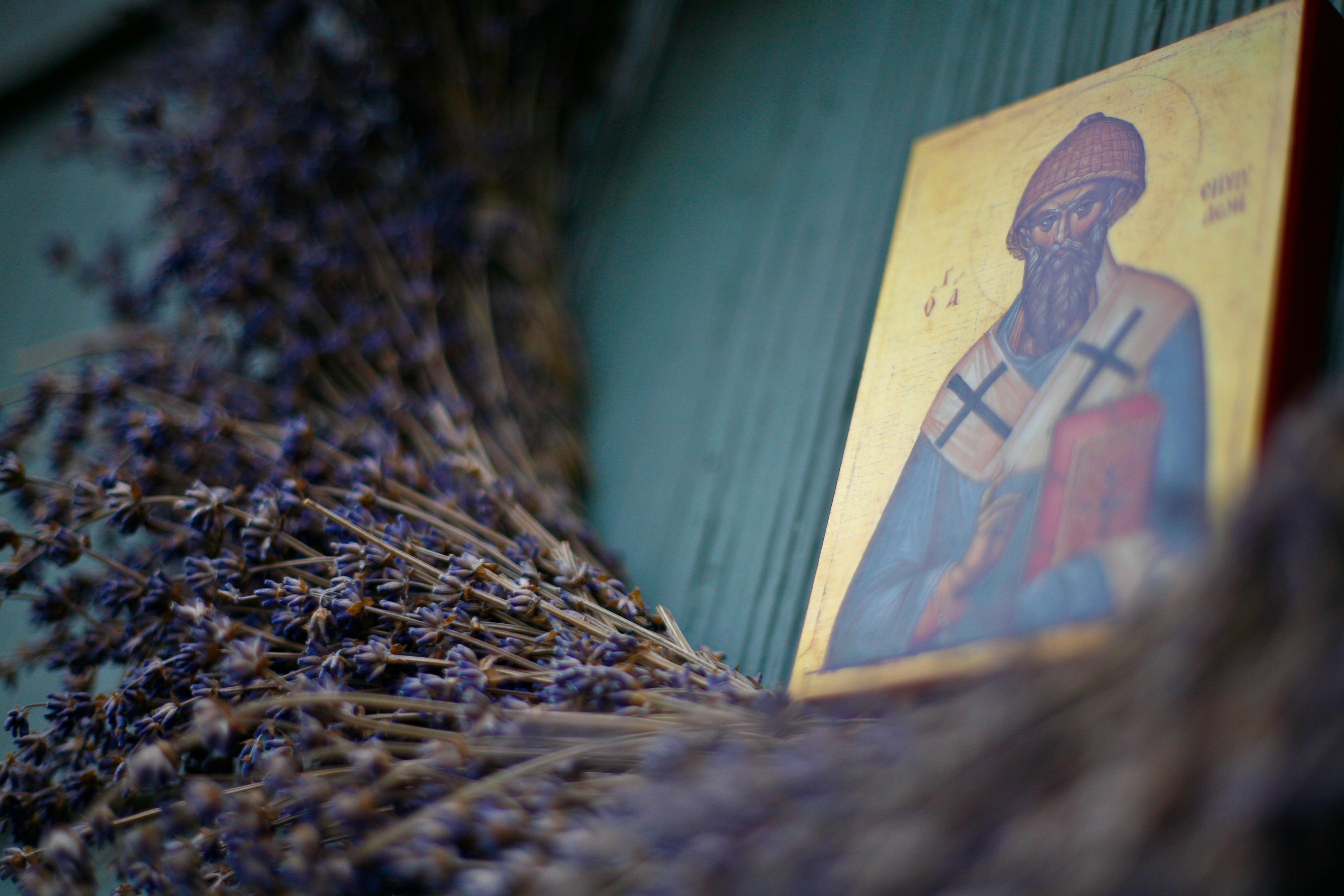 Lavender Saint