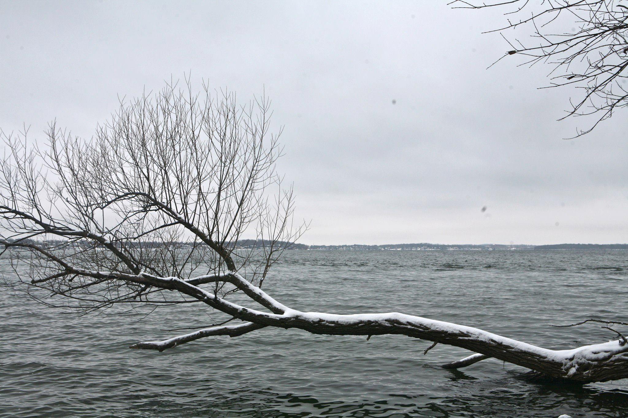 Lean Branch
