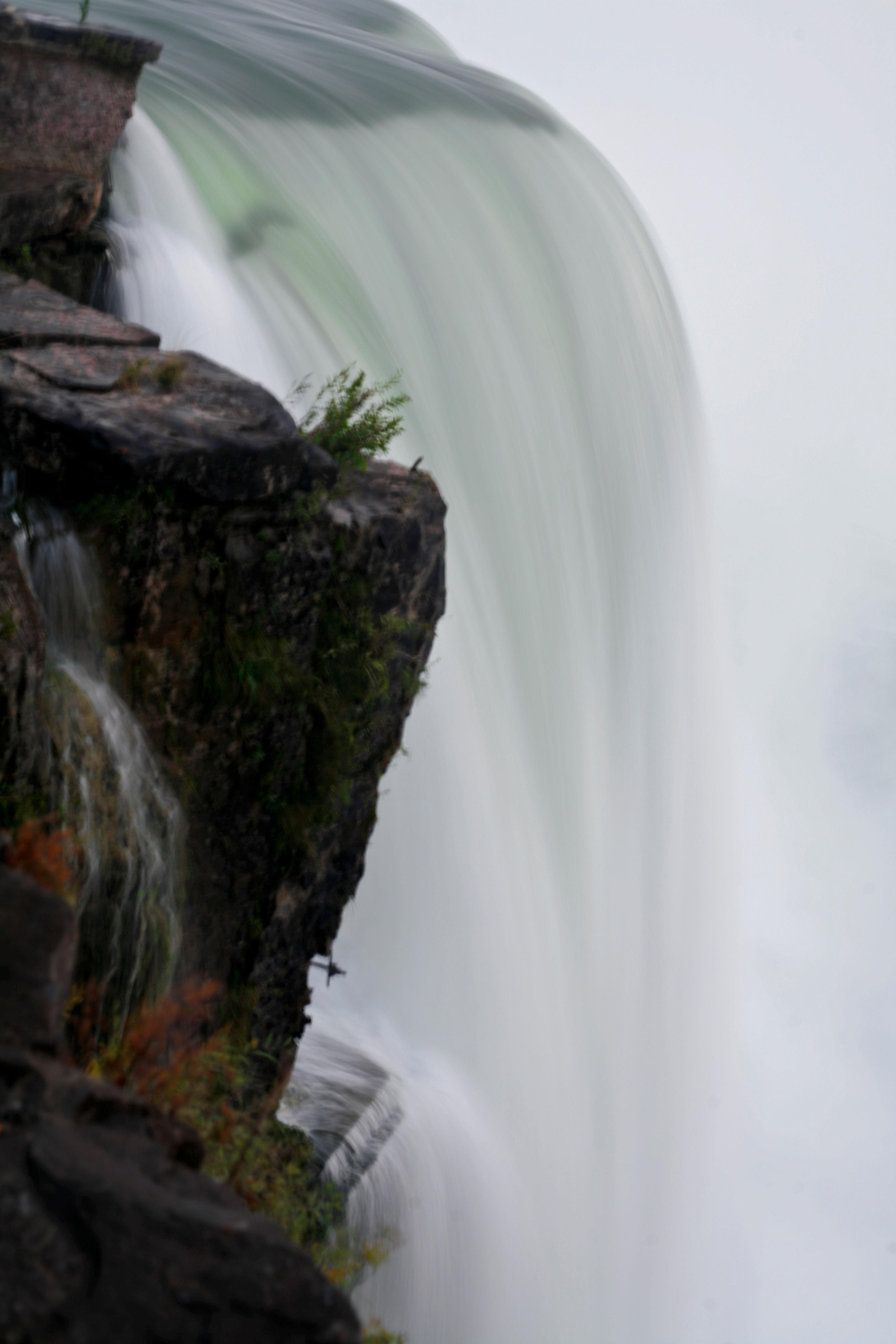 Water Grace