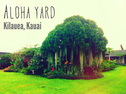 Kilauea, Kauai, Hawaii