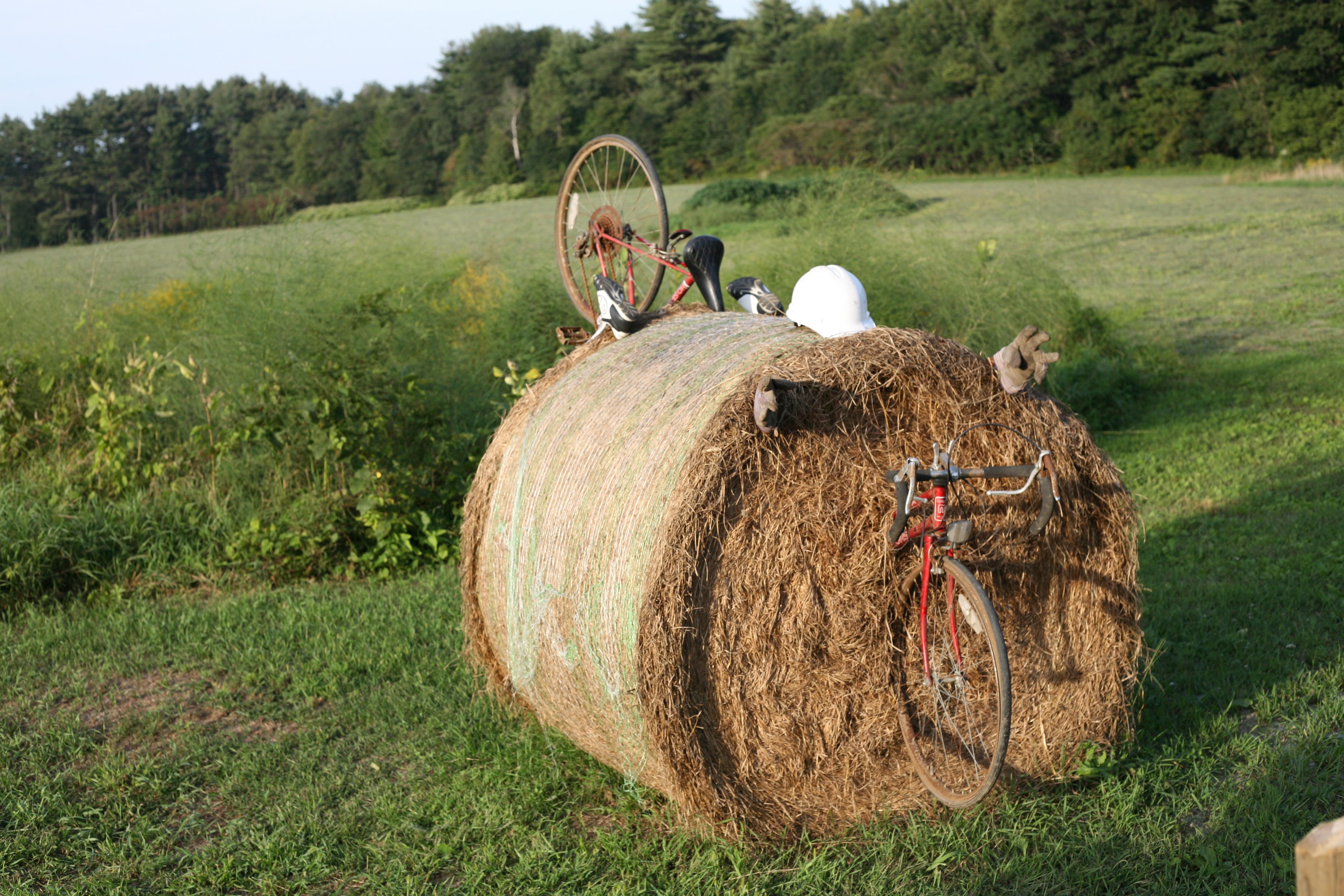 Bike Crash Dummy