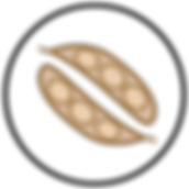Ícones_Expoente_curvas_r1_c15.png