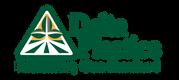 DPS_logo_wTag_Horiz_clr.png