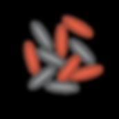 Ícones_Expoente_curvas_r1_c11.png