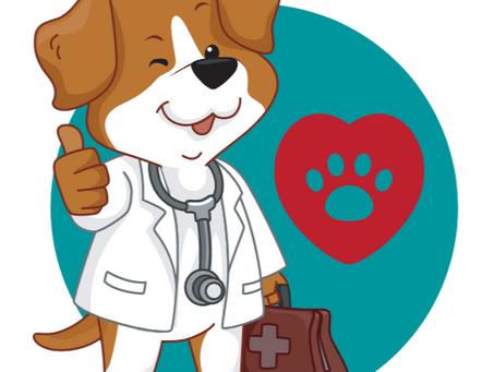 Greater Vancouver: Plant-based Supportive Veterinarians