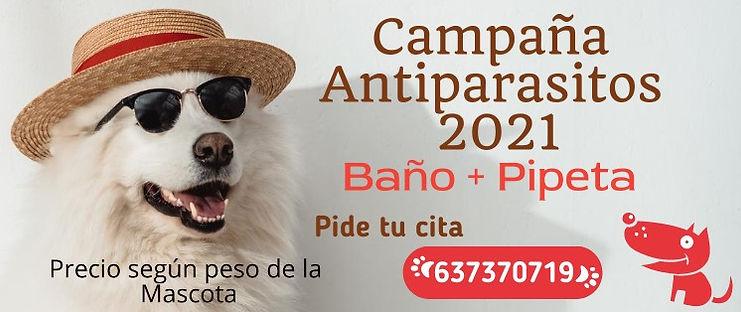 Campaña desparasitar 2021.jpeg
