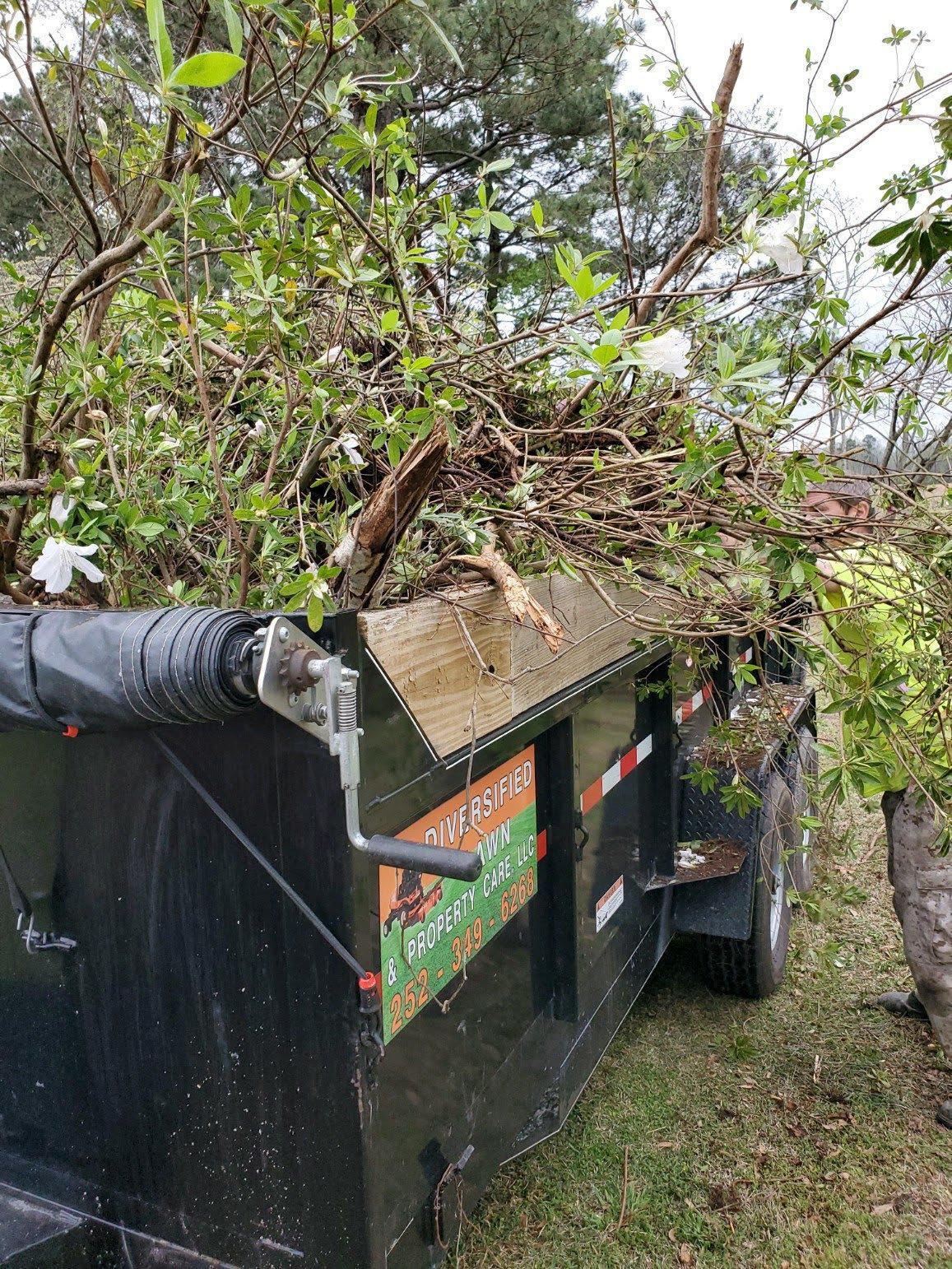 Tree/Bush Trimming