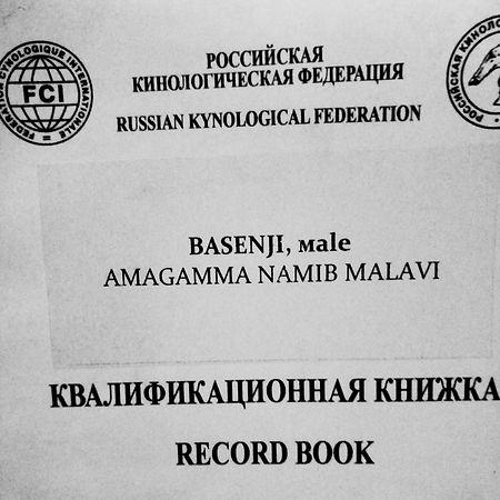 Образец оформления квалификационной книжки