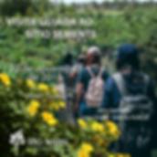 2019-11 - VISITA GUIADA site.png