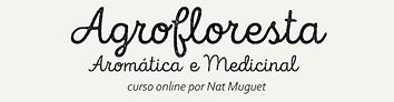 CURSO ONLINE MEDICINAL.png