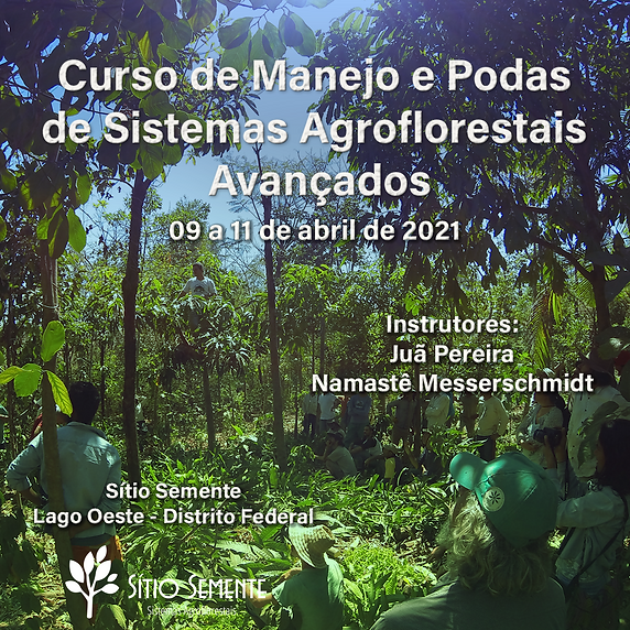 2021-04 - CARTAZ AVANÇADO site.png