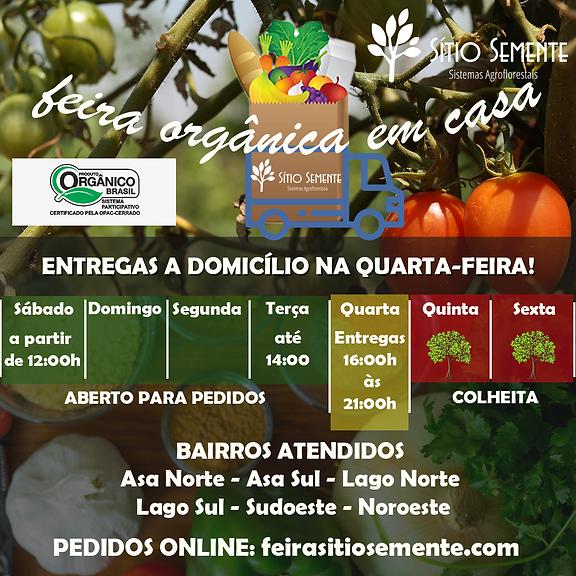 2020-10-28 - CARTAZ FEIRA PLANO PILOTO F