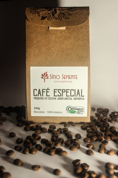 Café Agroflorestal