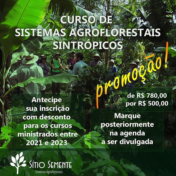 2020-08-19-PROMOÇÃO_CURSO_DE_SAF_site.
