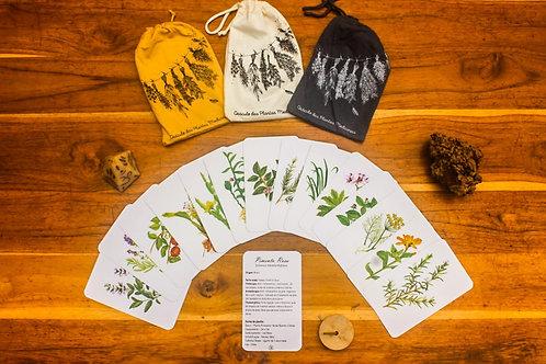 Oráculo de Plantas Medicinais