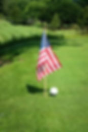 flag at golf course.jpeg