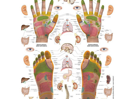 La Riflessologia, una tecnica antica per il benessere dell'intero organismo