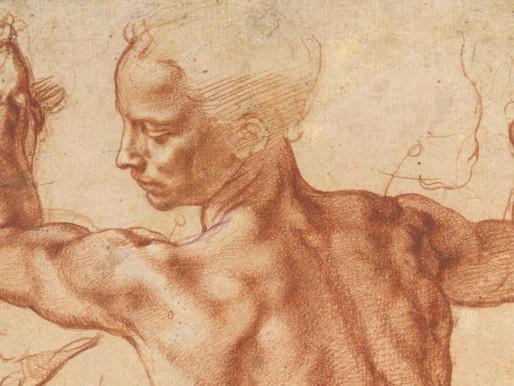 I muscoli scheletrici: composizione e struttura delle leve per un corretto movimento