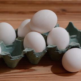 5 Reglas simples para conservar huevos