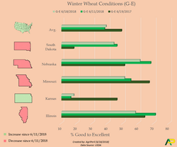 Wheat Conditions 6_18_2018