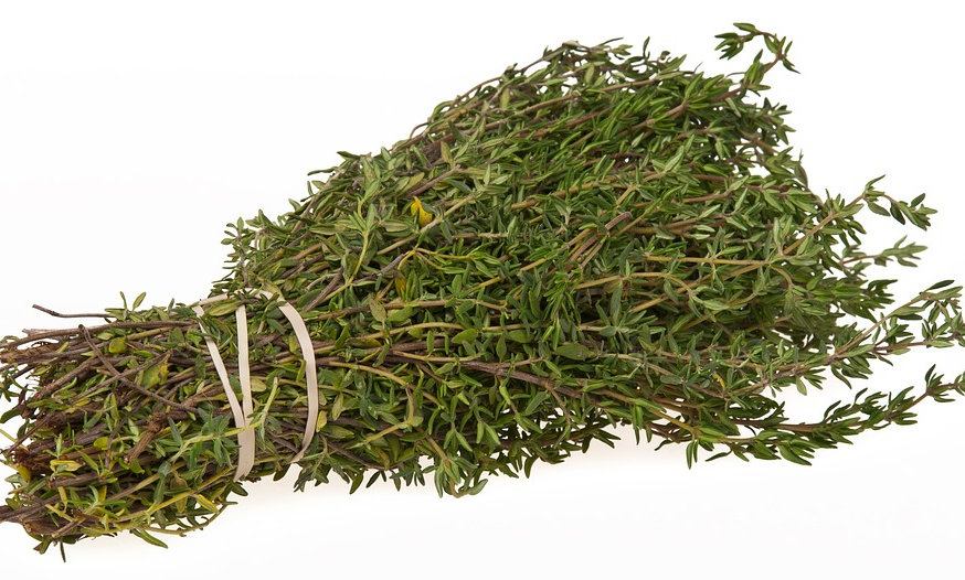 Thyme (Sold by the bunch)