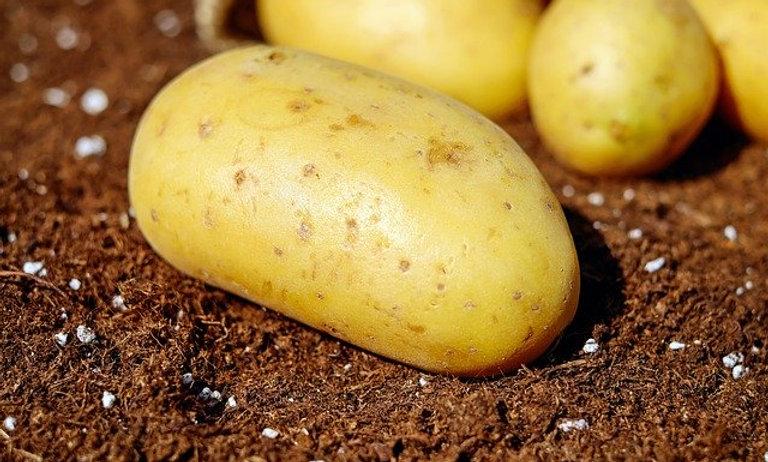 Yukon Gold Potatoes (lb)