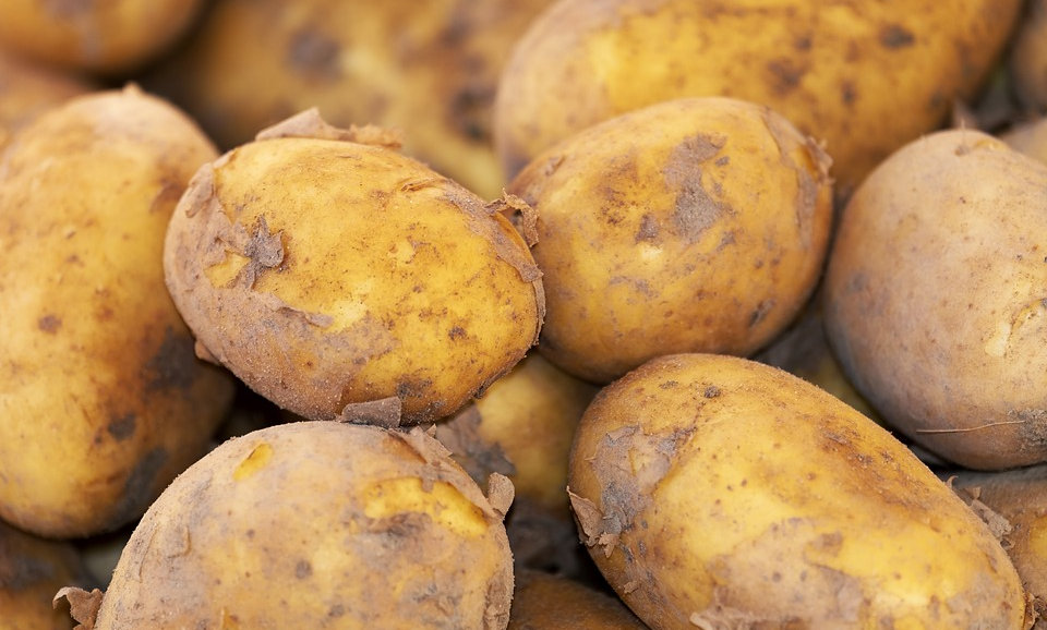 Kennebec Potatoes (lb)