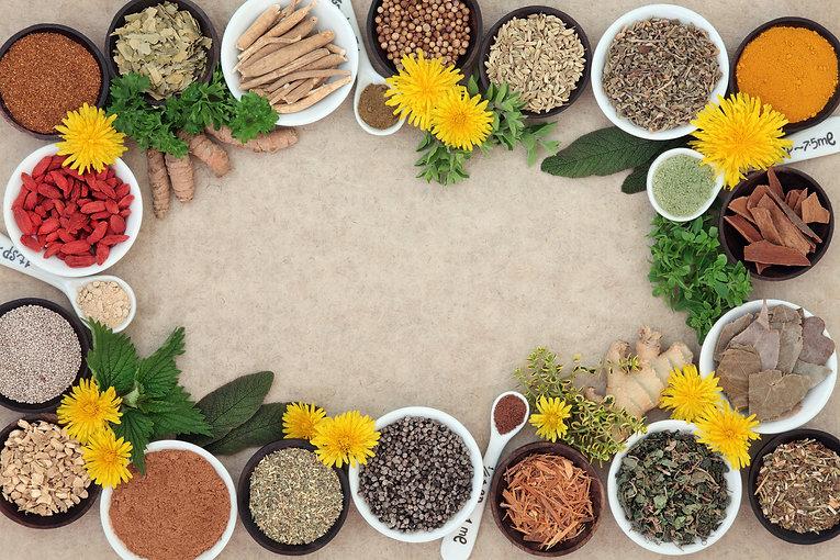 Herbs Medicinal.jpg