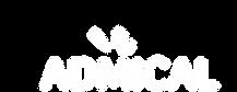 ADMICAL-LOGO-BLANC - sans baseline.png