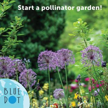 COP26_pollinator-tip03.2.jpg