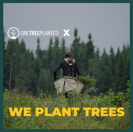 WePlantTrees1.png
