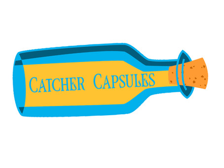 Catcher Capsules Project Feedback